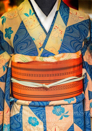 Kimono Copyright 2017 Steve Leimberg UnSeenImages Com _DSF0856