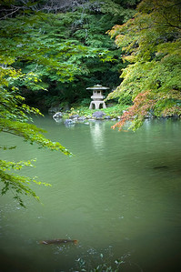 Japanese garden with Koi pond, maple trees and lantern. Narita-San near Tokyo, Japan. Vertical.