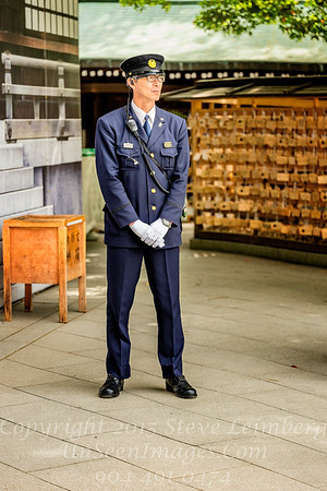 Guard at Temple - Copyright 2017 Steve Leimberg UnSeenImages Com _DSF0708