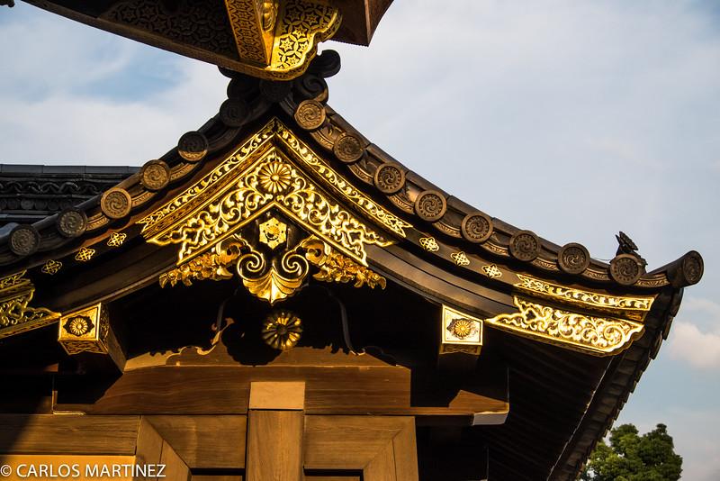 Tokugawa Shogun Castle