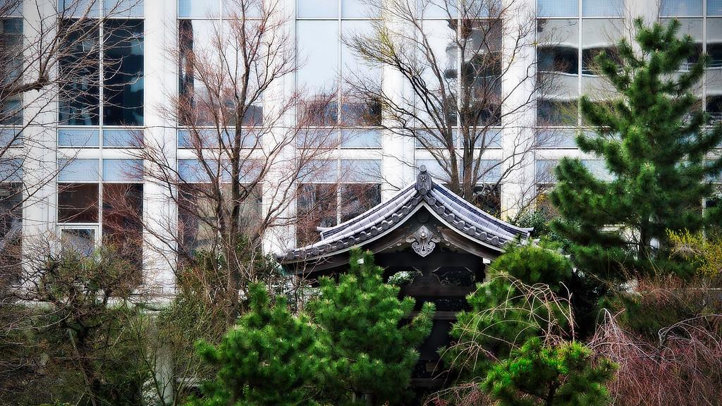 Seishoji Temple; Tokyo; Japan