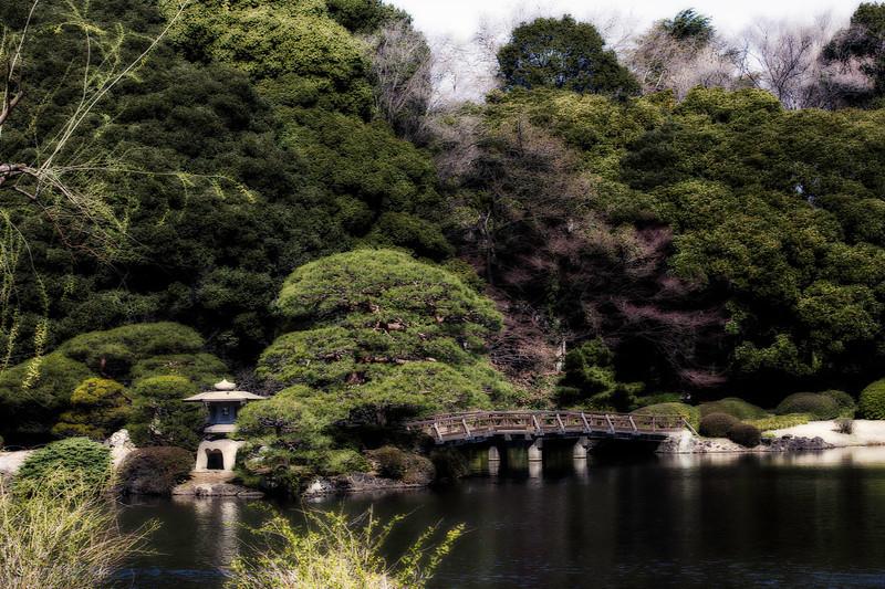 Shinjuku Gyoen National Garden; Tokyo; Japan