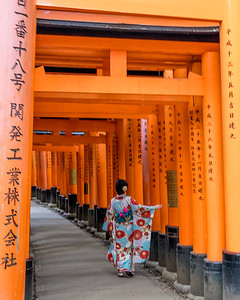 Entering the Torii Gates