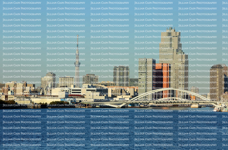 Skyline view of Sumida.  Sumida is a special ward located in Tokyo Metropolis and is home to Skytree the world's tallest TV tower .
