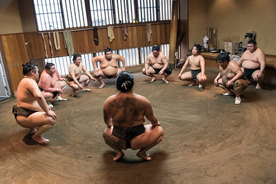 Sumo Training Session