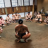 Sumo Training Session