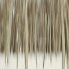 Birch Blur