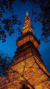 Tokyo Tower Rise