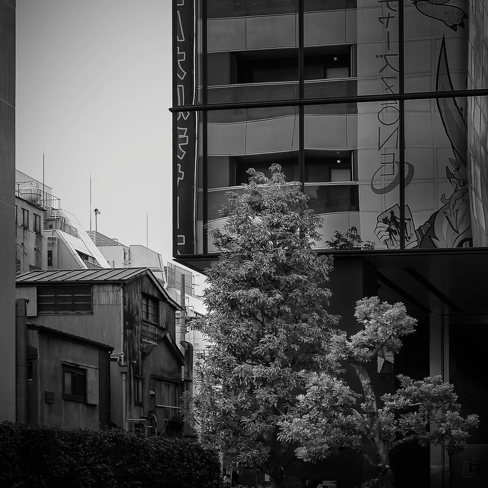 Old vs. New; Tokyo; Japan