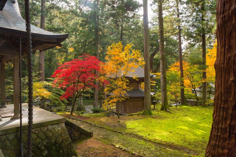 The Eiheiji Temple. High Noon.