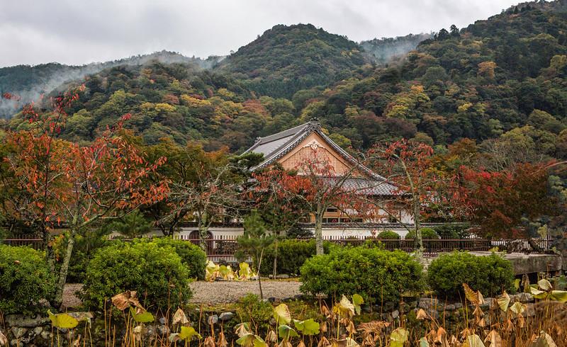 Autumn in Kyoto.