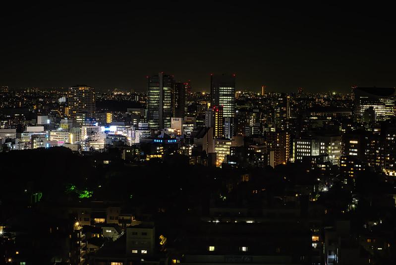 Shinagawa Prince Hotel, Tokyo<br /> Last Night in Japan