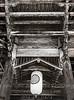 Lantern - B&W Copyright 2017 Steve Leimberg - UnSeenImages Com _DSF2814