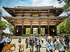 Nara Deer at Temple - Copyright  2017 Steve Leimberg UnSeenImages Com _DSF2803