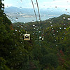 We rode a cable car to the top of the mountain on Miyajima.