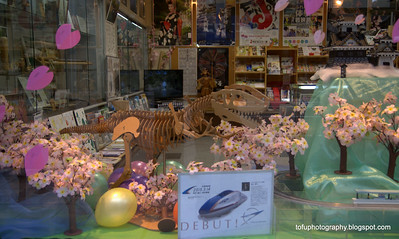 Interior of a shop including a wooden dinosaur skeleton in Osaka, Japan in March 2015