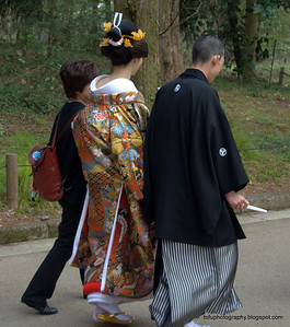 Wedding couple in traditional dress at the botanical gardens in Kyoto, Japan in March 2015. A stunning kimono
