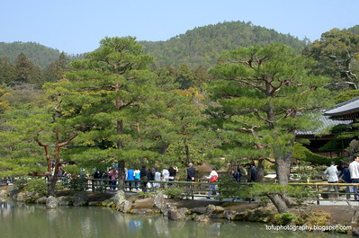 Tourists at  the beautiful Kinkakuji Temple in Kyoto, Japan in March 2015