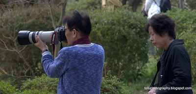 A couple at the botanical gardens in Kyoto, Japan in March 2015. The man has a very big Cannon lens