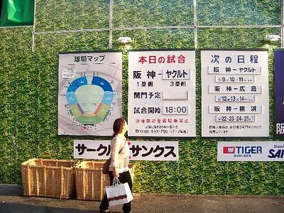 Hanshin Tigers at Koshien Stadium