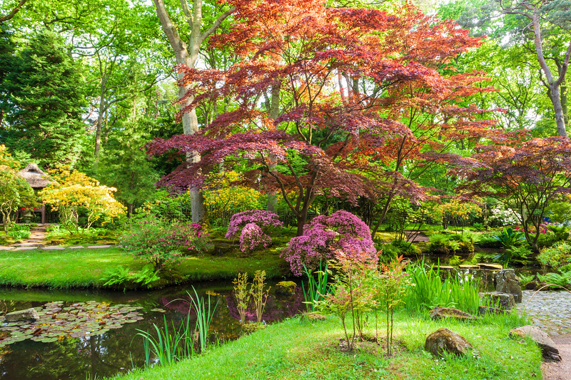 Japanese Garden on a bright sunny day in late spring.