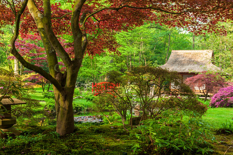 Japanese-Garden-Clingendael-Estate-The-Hague-Spring-opening-2012-2399