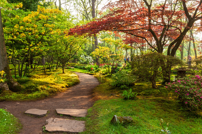Japanese-Garden-Clingendael-Estate-The-Hague-Spring-opening-2012-2411