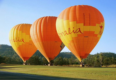 Beautiful Hot Air Balloons at the Launch Site