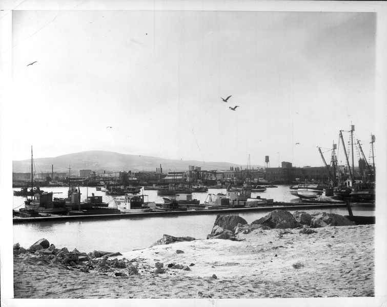 """""""Fish Harbor in Terminal Island, operating base for the Japanese fishing fleet.  In the background are some of the canneries.""""--caption on photograph"""