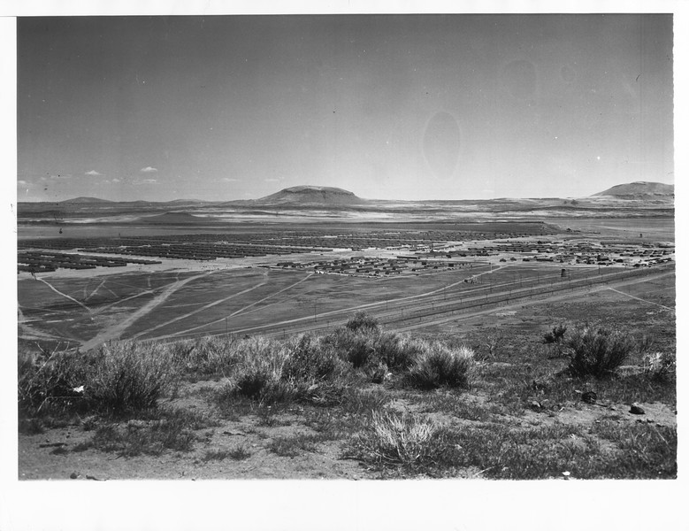 """""""General View of Relocation Center -- This is a general view of the Tule Lake, California, Japanese relocation center located near the California-Oregon border and 40 miles southeast of Klamath Falls, Ore."""" -- caption on photograph"""