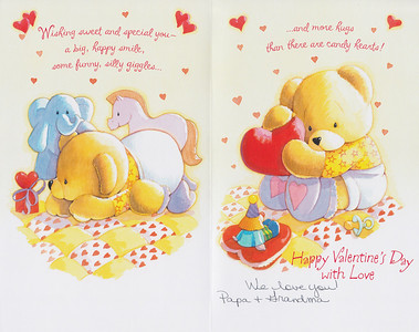 Valentine 1b 2013