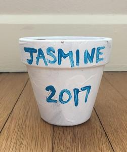 Art Jas 43b 2017