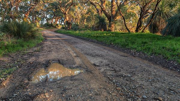 Dirty Back Roads