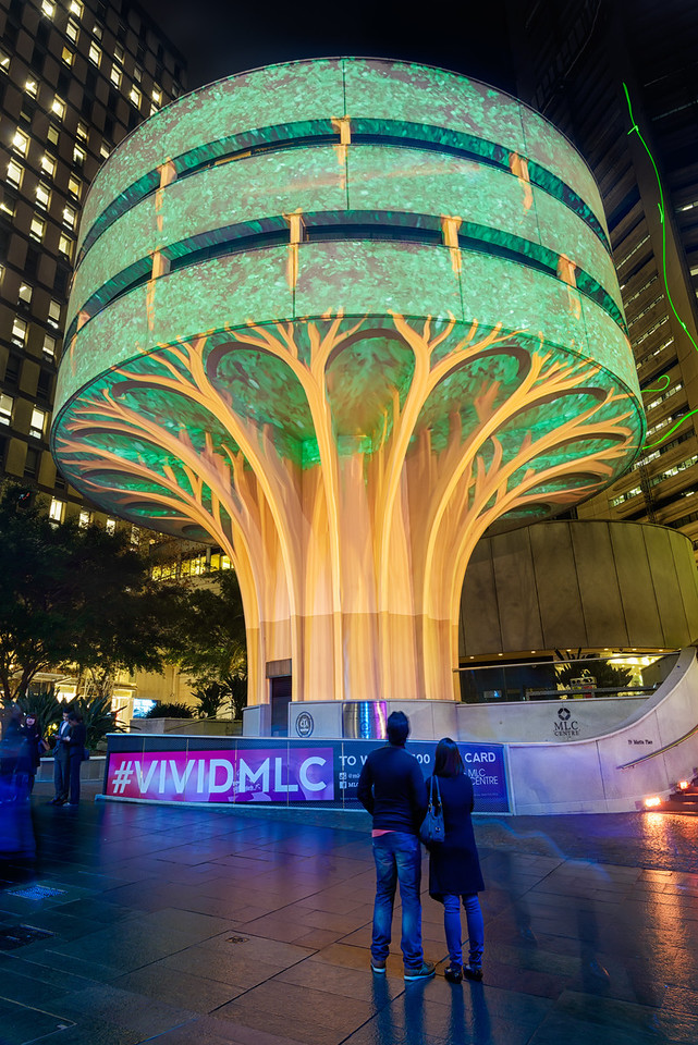 Vivid Sydney - Urban Tree Project