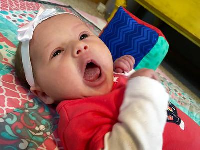 Gemma yawn