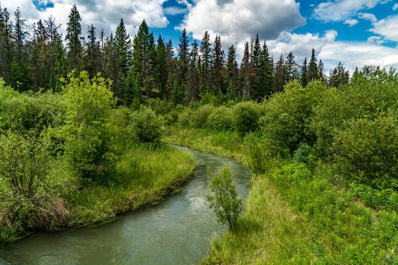 Stream in the Jasper Meadows