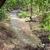 A seasonal creek flows under Trail 14