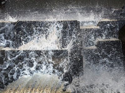 Spillover at the Searsville Dam, 31 December 2014