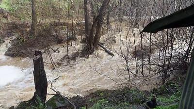 Creek below the dam, by the utilities shack.