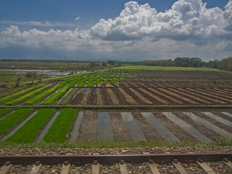 Train from Yogyakarta to Malang, Java, Indonesia