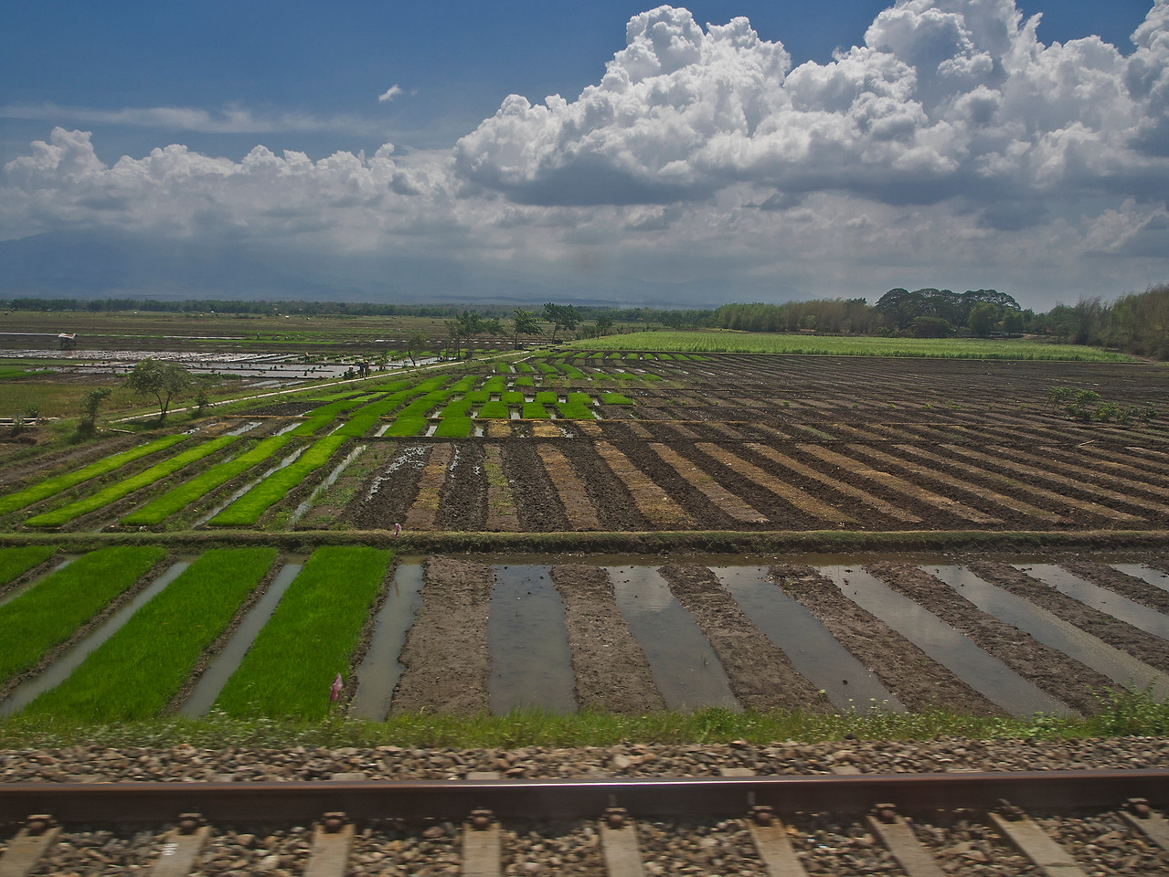 Train from Yogyakarta to Malang, Java, Indonesia
