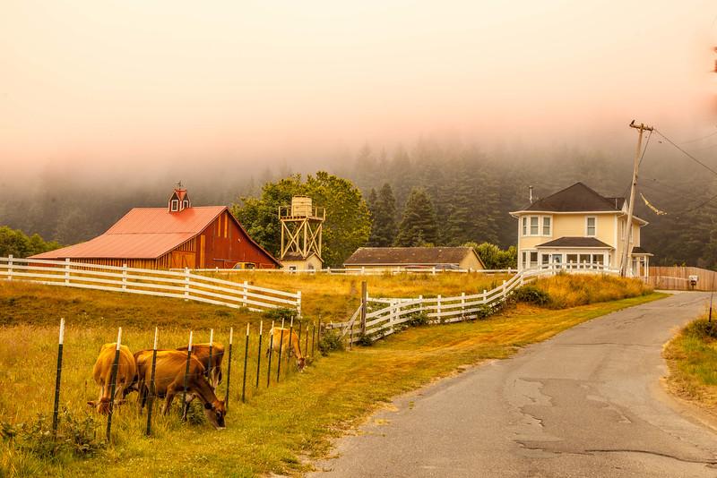 Humboldt County Farmhouse