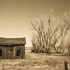 Old Cabin - Hwy 395