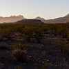 Javelina Hideout<br /> Terlingua, Texas<br /> Photo by Ashley Landis