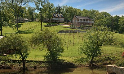 HermannHof Inn in Hermann, Missouri Hillside View of Cottages (in Spring) Jay & Karisa's Engagement - 02/22/2015