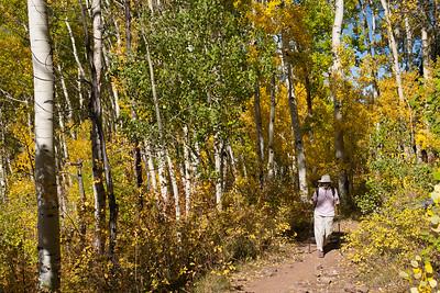 Donna hiking
