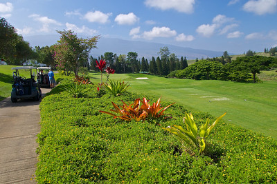 The Big Island Country Club, one of the golf courses I played.