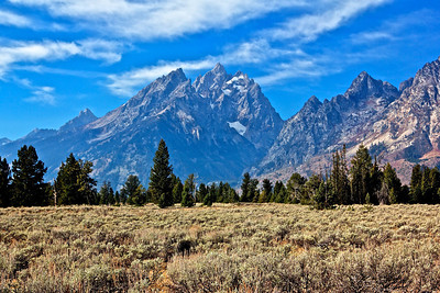 The Grand Tetons, some sagebrush and forest in foreground.