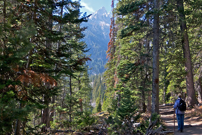 Donna on the hike near Jenny Lake, Tetons through the trees.