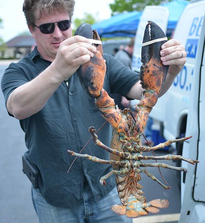 Jaycees Lobster Day